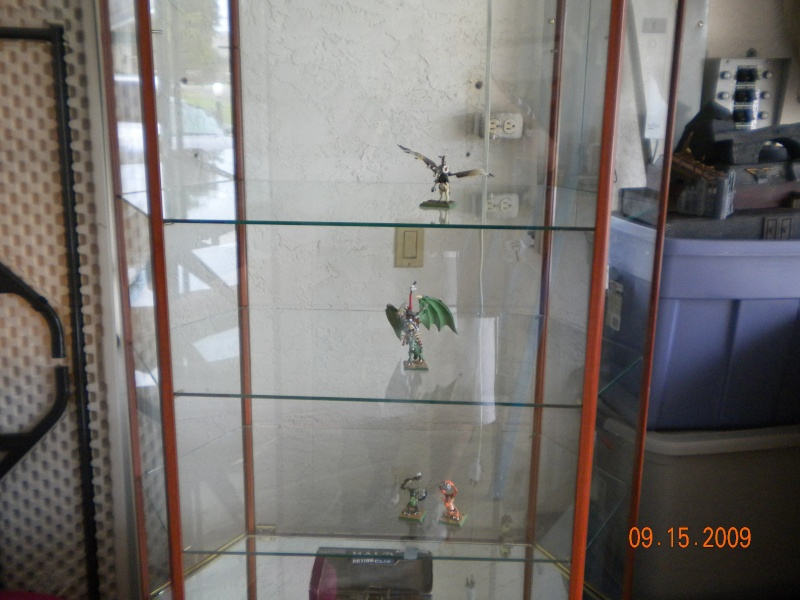 Display Case Pictur11