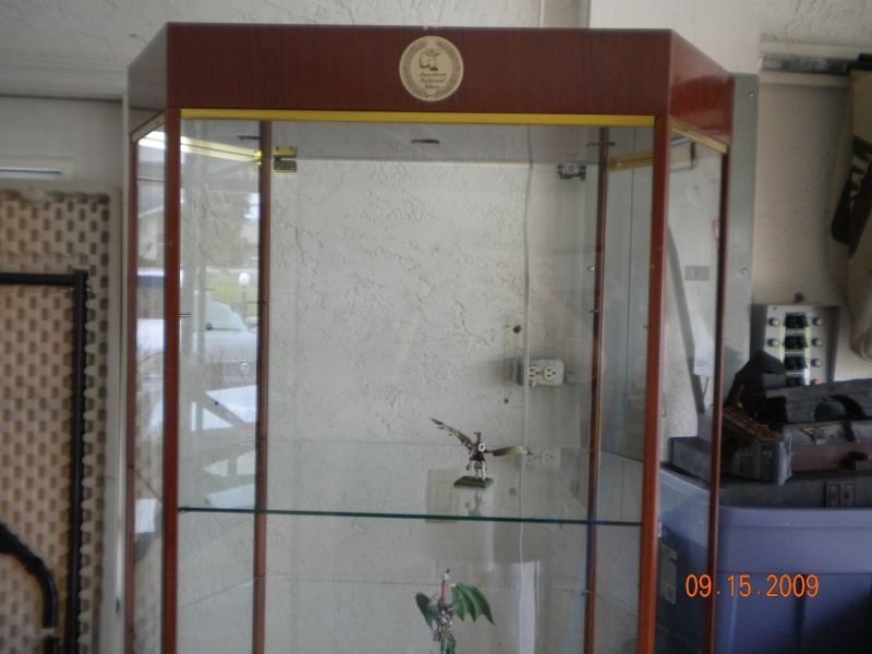 Display Case Pictur12