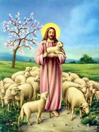 Notre-Seigneur - Page 2 34945010