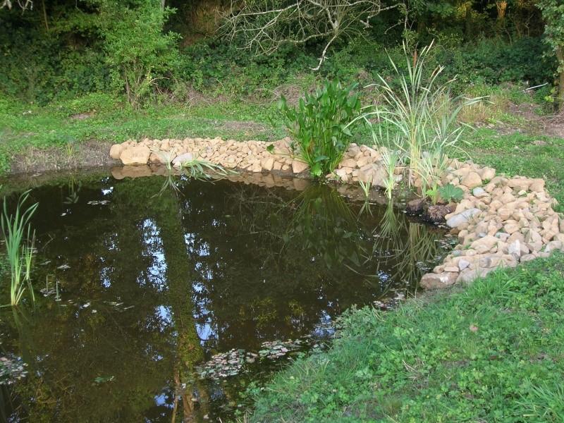 le plan d'eau avance petit à petit Dscn1730