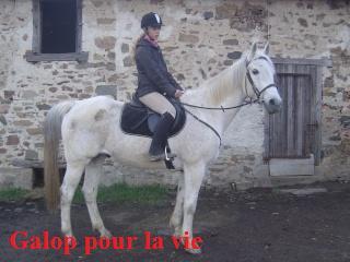 MARADAY MOONRAKER dit Blanc Blanc - ONC né en 1992 - adopté en mars 2009 Photos12