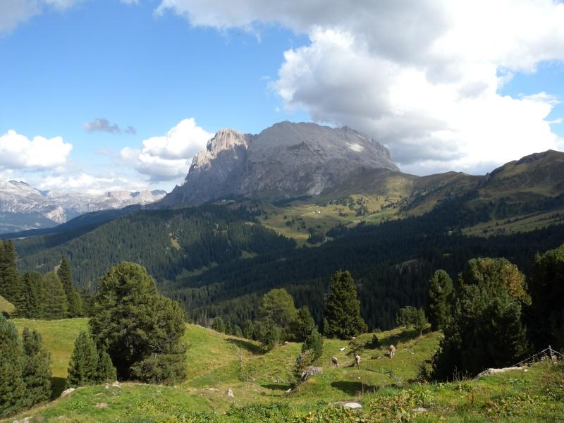 Alpe di Siusi (BZ) - Domenica 13 settembre Dscn3010