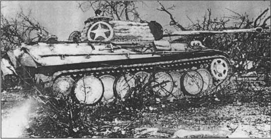 "Panther G ""Cuckoo"" 1/72° Cuckoo11"