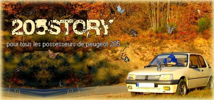 205 Story