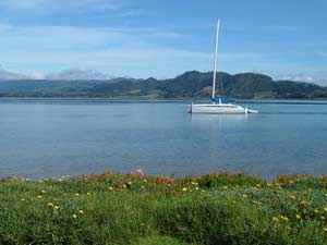 20th to 22nd of March, Social Fishing trip to Waihi Beach and weather depending Mayor Island Harbou10