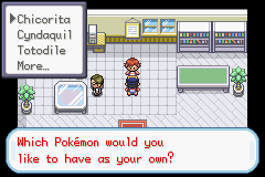 restrictions to hack games Pokemo26