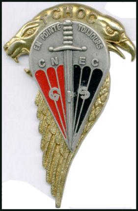 insignes du CNEC 1a_cho10
