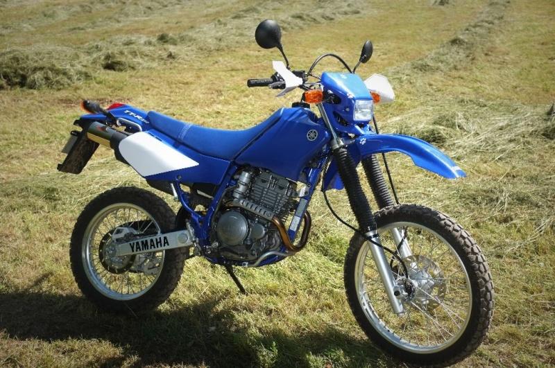 Yamaha 250 TTR - Page 4 Dscf2019