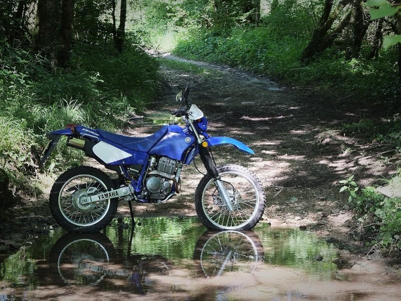 Yamaha 250 TTR - Page 4 Dscf3922