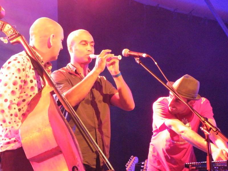 Karpatt festival tous en place à Saverne 2009_107