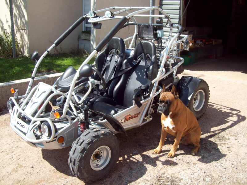 presentation de mon buggy PGO 250 biplace 101_0811