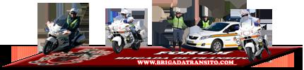Honda Civic 36-69-BD Forum_15