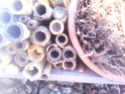 Maisons et hôtels à insectes pour le jardin le potager ..  Img_2012