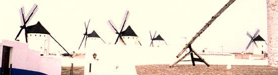 ¿Para qué sirve el Palo de los Molinos de viento? Campo310