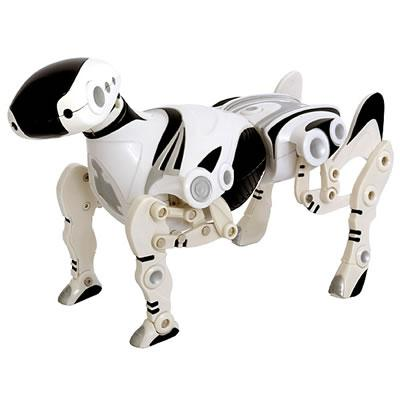 Wall-E Rpet10