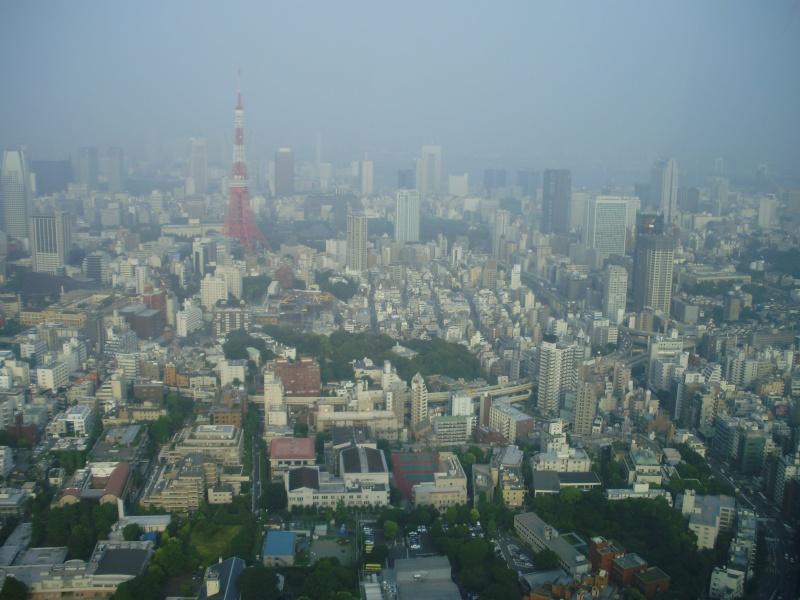 Séjour au Japon d'une année - Page 3 P6190013