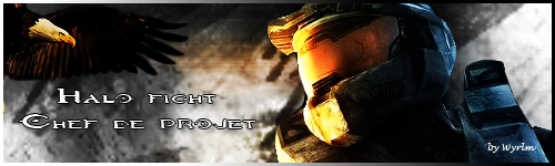 Site Web Halo Fight Signa_10