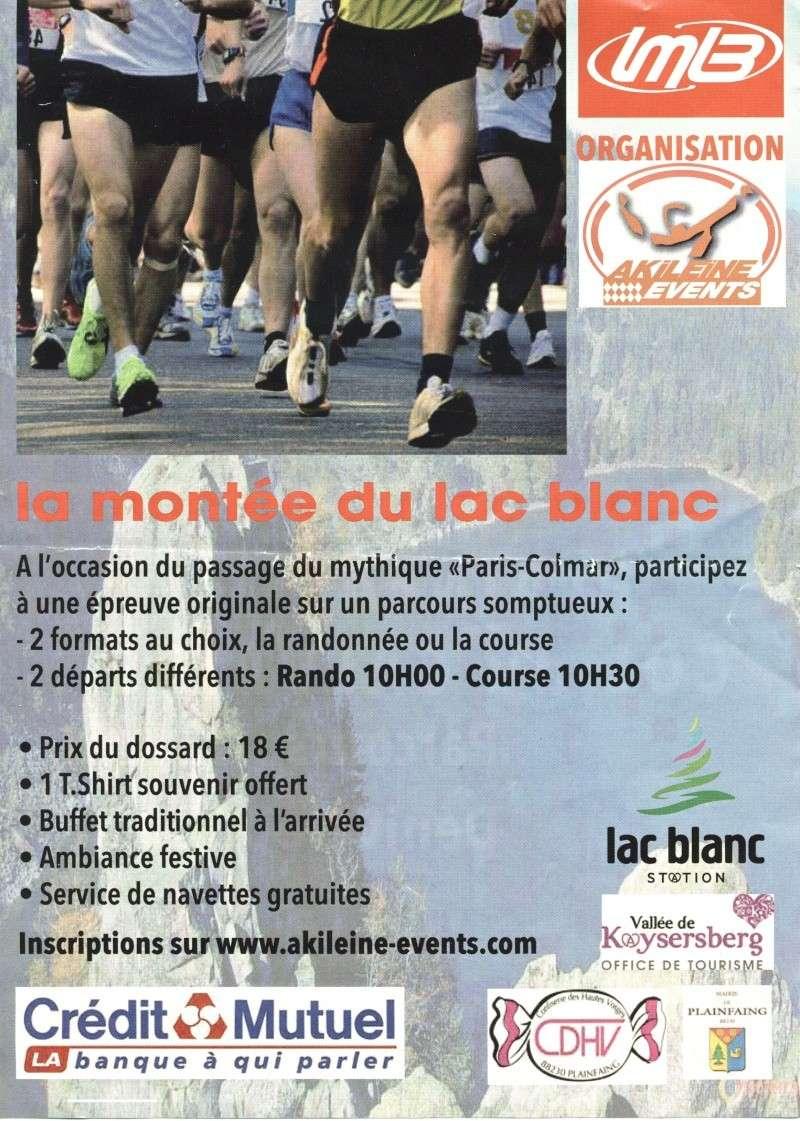 petite marche le 15 juin autour du paris colmar Numari14