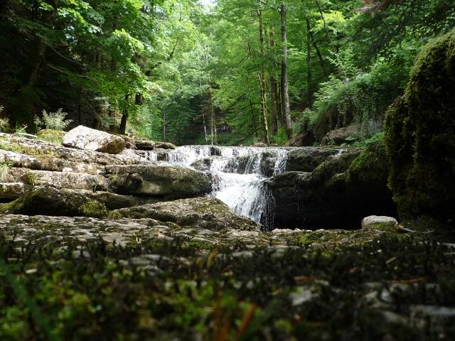 JURA cascades de l'Hérisson et Baume les Messieurs P1010211