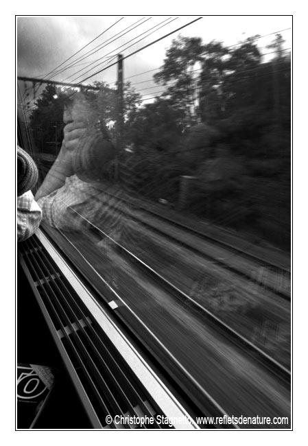 Stop That Train Dsc_4711