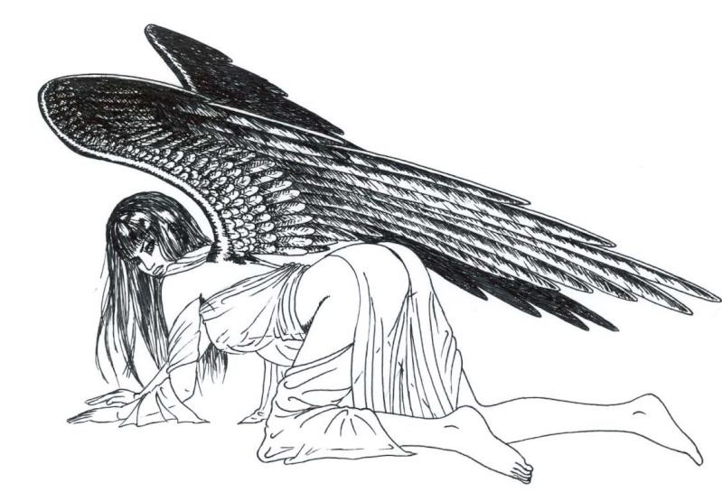 Illustrations Stormb27
