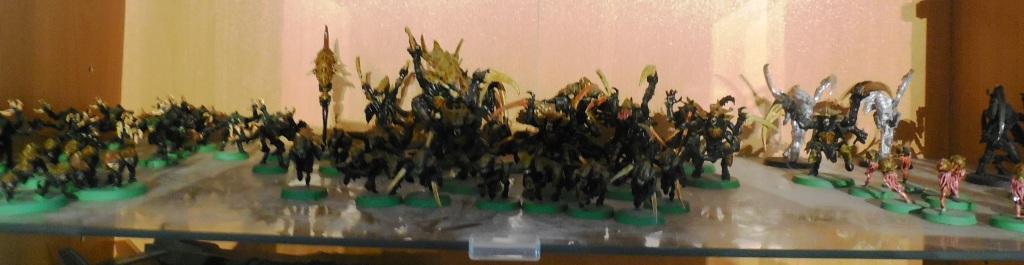 ma petite collection (petite à coté de celle de Pierre...) Dscn1913
