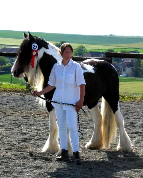 Une photo de vous et votre cheval - Page 4 005210