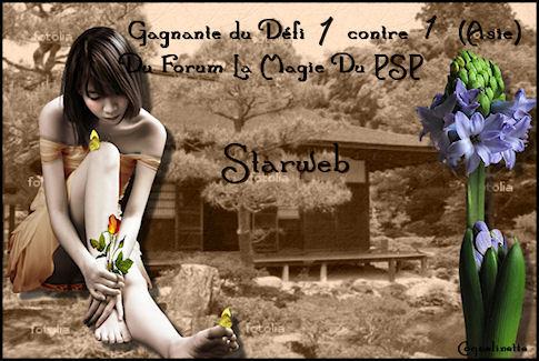 Défi 4 : Starweb VS Maryne Nouveaux prix Starwe12