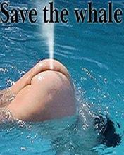 humour en image Save_t10