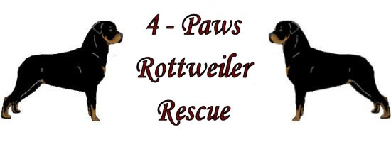 4 paws rottweiler rescue