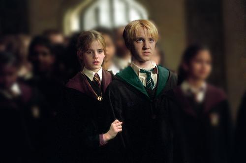The Draco x Hermione Fan Club 11715510