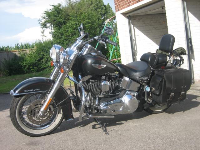Combien de Softail sur le forum Passion-Harley - Page 3 Softai19