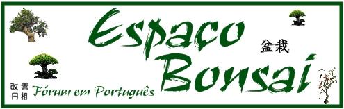 ESPAÇO BONSAI - Inicio