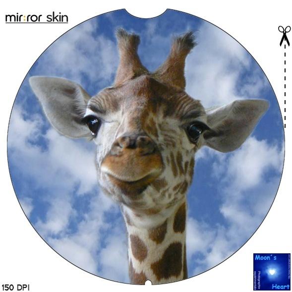 mirror:skin - Page 11 Girafe10