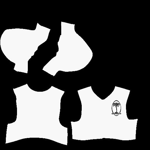 AA Logo/Uniforms - Galveston Palm Trees Galj10
