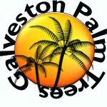 AA Logo/Uniforms - Galveston Palm Trees Gallog10