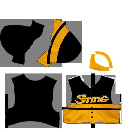 R Logo/Jersrey - Tulsa Sting Jersey25