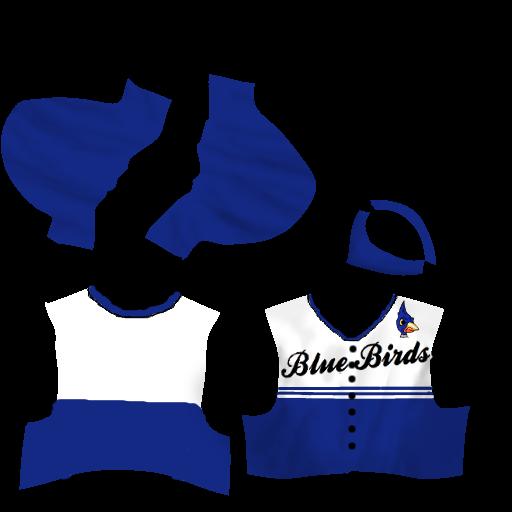 AA Logos/Uniforms - Oklahoma Heat Jersey30