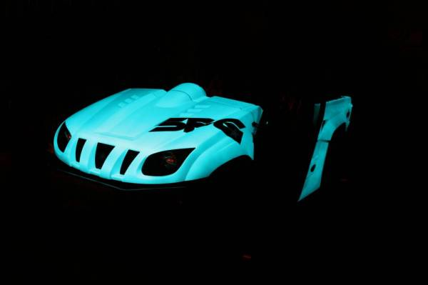 GLOW IN THE DARK Rhino_21