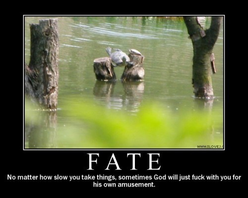 Motivational Posters Fate10