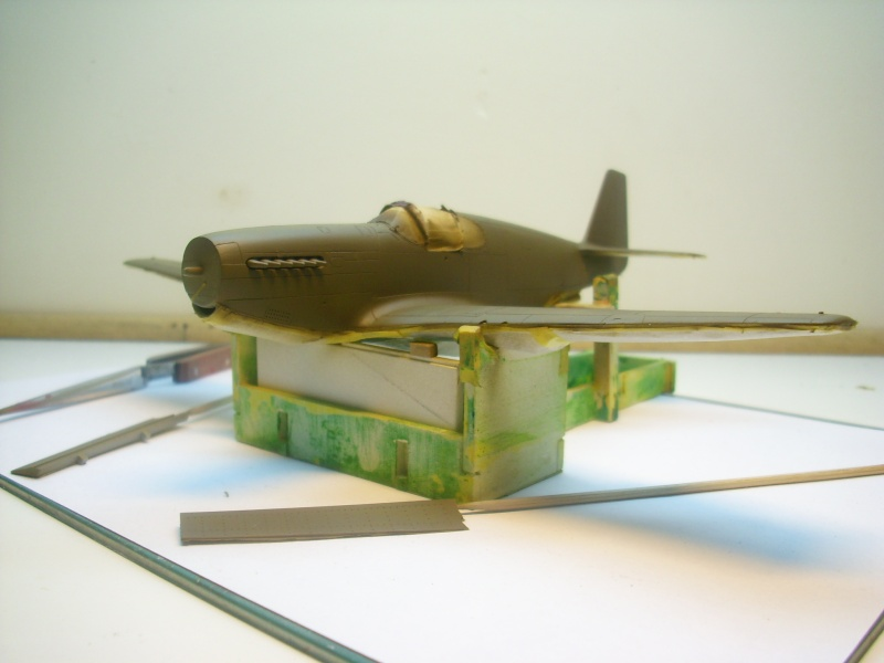 P-51B Mustang Img_1426