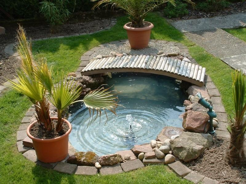 Mon petit bassin - Petit bassin de jardin ...