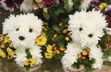 Composition de fleurs... 37705010