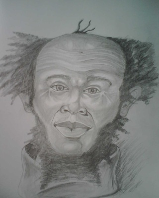 A Drawing I have done form my mind ..   Img00911