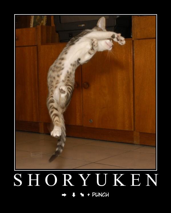 Random funny stuff Shoryu10