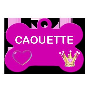 CAOUETTE/FEMELLE/3 MOIS /TAILLE PETITE ADULTE CHEZ LES PARENTS DU VETERINAIRE Caouet10
