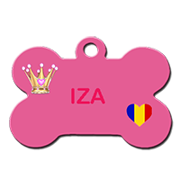 IZA/FEMELLE/1 MOIS ETDEMIE A PEU PRES Chat-i11