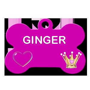 GINGER/FEMELLE /3 MOIS A PEU PRES /TAILLE MOYENNE ADULTE /DEMANDE EN COURS au refuge Ginger10