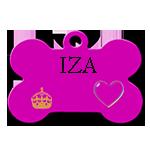 IZA /FEMELLE/ 2 ANS NEE EN 2016 (marusia)recs en FA dans les vosges  Iza10