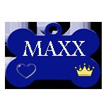 MAXX /Mâle/ né en 2016/ taille moyenne  Maxx10